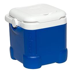 Igloo Ice Cube Cooler