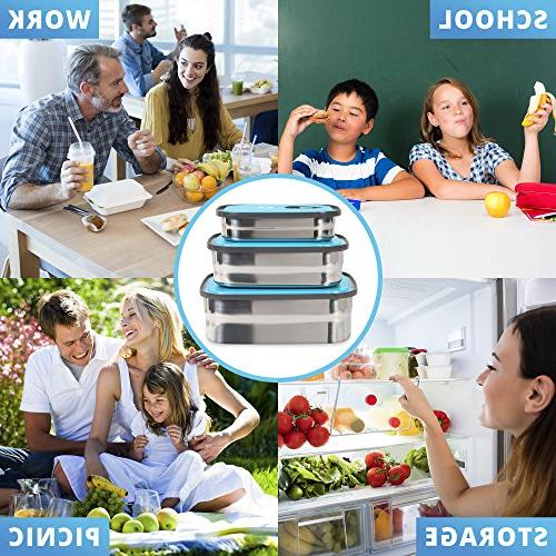 Bento Box Container Storage In Leak Lids. Healthy Kids Adults Outdoor Meals. Fun & Decorative BPA